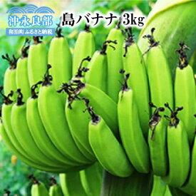 【ふるさと納税】沖永良部島の遠いあの日が甦る懐かしの味「島バナナ」3kg 2021年〜2022年発送