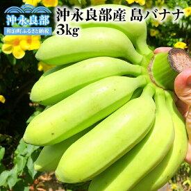 【ふるさと納税】無農薬有機栽培 島バナナ3キロ【先行予約5月】