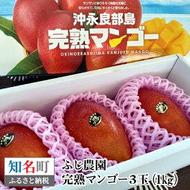 【ふるさと納税】31-01 ふじ農園の完熟マンゴー 1kg【先行予約受付】