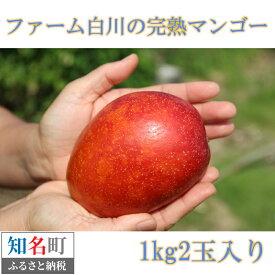 【ふるさと納税】32-02 ファーム白川の完熟マンゴー 1kg【先行予約受付】