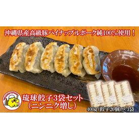 【ふるさと納税】沖縄県産高級豚パイナップルポーク純100%使用!琉球餃子(ニンニク増し)3袋セット
