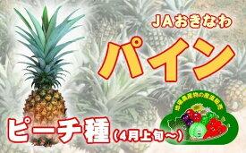 【ふるさと納税】AE-7 ピーチパイン JAおきなわ【4月上旬からの発送】