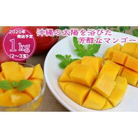 【ふるさと納税】【2020年発送】沖縄の太陽を浴びた芳醇なマンゴー 1kg