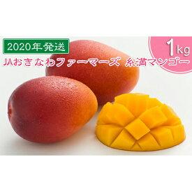 【ふるさと納税】【2020年発送】JAおきなわファーマーズ 糸満マンゴー 1kg