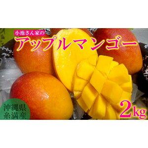 【ふるさと納税】【2020年発送】小池さん家が丁寧に育てたアップルマンゴー2kg
