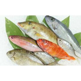 【ふるさと納税】旬で新鮮な魚をお届けします!おまかせ鮮魚セット(約4kg)