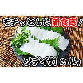 【ふるさと納税】モチっとした新食感!ソデイカ(セーイカ)約1kg
