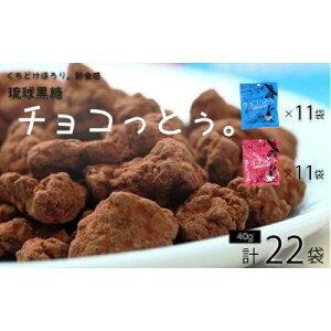 【ふるさと納税】黒糖菓子の新食感「チョコっとぅ。」シリーズセット 40g×22袋