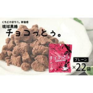 【ふるさと納税】黒糖菓子の新食感「チョコっとぅ。」40g×22袋