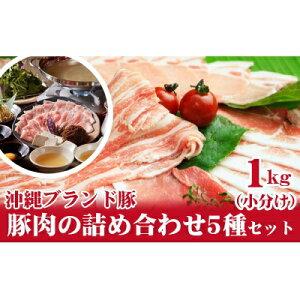 【ふるさと納税】【沖縄県ブランド豚】豚肉の詰め合わせ5種セット1kg(小分け)