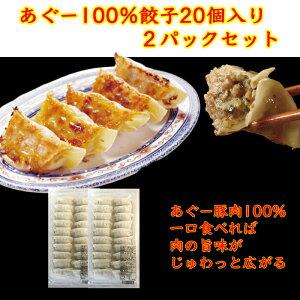 【ふるさと納税】沖縄そばセット&あぐー100%餃子(2パックセット)