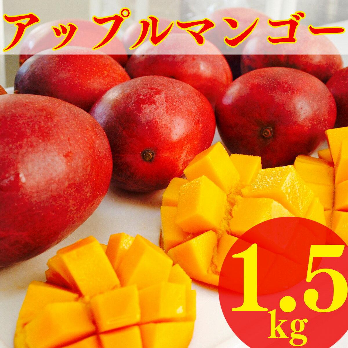 【ふるさと納税】先行予約!南城市産アップルマンゴー1.5kg