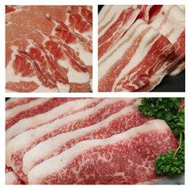 【ふるさと納税】沖縄あぐー&おきなわ和牛の贅沢食べ比べセット(総重量2.5kg)