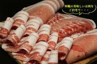 【ふるさと納税】沖縄あぐーしゃぶしゃぶ用バラ・ロース食べ比べセット(総重量1.2kg)特製シークヮーサーポン酢付き
