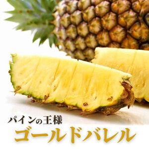 【ふるさと納税】沖縄県産パイ...