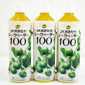 【ふるさと納税】【シークヮーサー100】PETボトル(500ml)3本セット