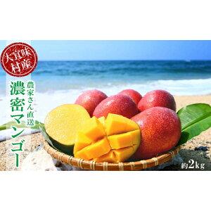 【ふるさと納税】【2020年発送】大宜味村農家さん直送 濃密マンゴー《秀品・2Kg》