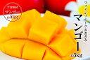【農園直送】ファインフルーツおおぎみマンゴー 約5kg 2017年発送