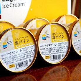 【ふるさと納税】カナンファームの塩パインアイス