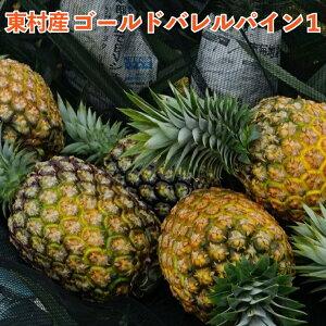 【ふるさと納税】東村産 ゴールドバレルパイン1