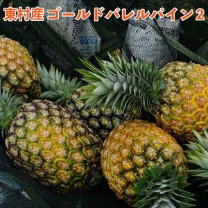 【ふるさと納税】東村産 ゴールドバレルパイン2