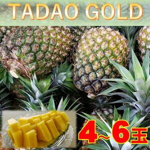 【ふるさと納税】【TADAO GOLD】4〜6玉 2021年7月中旬以降発送予定!