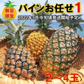 【ふるさと納税】【2022年発送!】東村産パインアップルお任せセット1(2~4個)