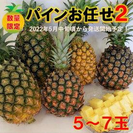 【ふるさと納税】【2022年発送!】東村産パインアップルお任せセット2(5~7個)