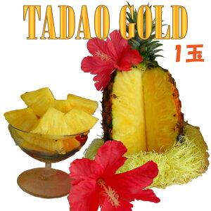 【ふるさと納税】【TADAO GOLD】1玉 1.7kg 2020年6月頃〜順次発送予定〜