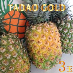 【ふるさと納税】【TADAO GOLD】3玉 2020年6月頃〜順次発送予定〜