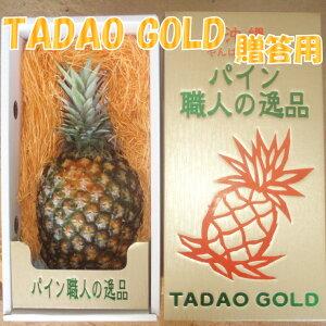 【ふるさと納税】【贈答用:限定50セット】【TADAO GOLD】1玉 1.7kg〜2kg