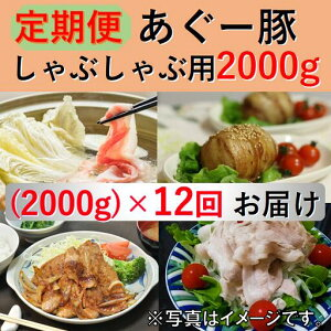 【ふるさと納税】◆定期便◆【東村ブランド豚】あぐー豚しゃぶしゃぶ用(2000g)×12回