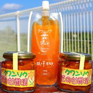 【ふるさと納税】沖縄島野菜「クワンソウ」ジュレ&酢漬けセット