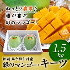 【ふるさと納税】緑のマンゴー・キーツ(1.5kg)2019年8月下旬〜9月発送