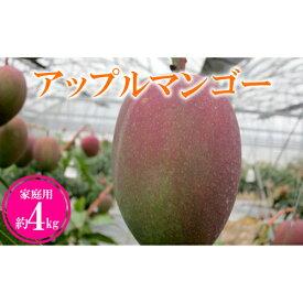 【ふるさと納税】【2020年発送】農家さん直送!アップルマンゴー約4kg 家庭用