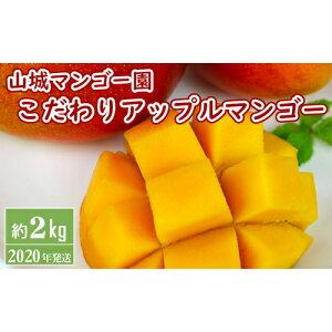 【ふるさと納税】【2020年発送】山城マンゴー園こだわりアップルマンゴー【約2Kg】