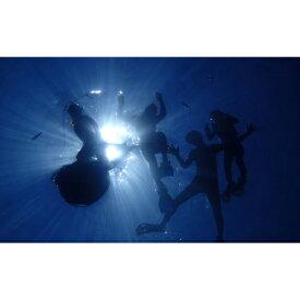 【ふるさと納税】ハレタオーシャンサポート沖縄の大定番!【青の洞窟シュノーケリングツアー】2名様