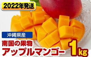 【ふるさと納税】【2021年発送】南国の果物 沖縄県産アップルマンゴー1kg