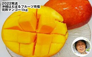 【ふるさと納税】【2021年発送】<沖縄はえばるフルーツ市場>完熟マンゴー1kg