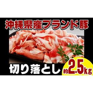 【ふるさと納税】【ブランド豚・キビまる豚】切り落とし 約2.5kg