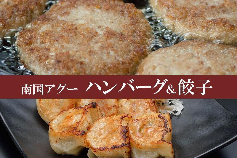 【ふるさと納税】南国アグー ハンバーグ&餃子セット