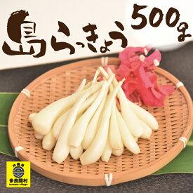 【ふるさと納税】島らっきょう(500g)多良間 宮古 沖縄 島食材 島野菜 らっきょう