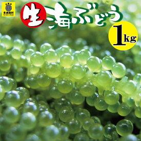 【ふるさと納税】海ぶどう(生)1kg 海ぶどう ぶどう 海 島食材 多良間 宮古 沖縄