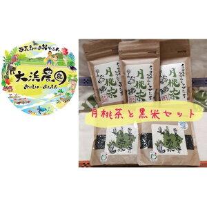 【ふるさと納税】月桃茶と黒米セット 【お米】