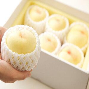 2020年分予約 減農薬 岡山 清水白桃 白桃 桃 13玉 約3kg 化粧箱入 贈答用 産地直送 SSS