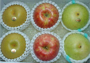 豊水梨 二十世紀梨 サンつがる 大玉約2キロ6個前後入 贈答向け 秀品 詰め合わせ ギフト フルーツギフト 豊水 梨 和梨 20世紀梨 さんつがる りんご リンゴ 林檎 S10