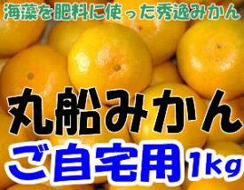 【訳あり】和歌山県有田産 丸船みかん S〜2Lサイズ1kg 5〜15個入 有田みかん