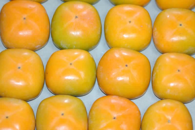 2019年分予約 柿 種なし柿 約7.5kg 28〜32個入 2L〜3L 贈答用 秀品 たねなし柿 種無し柿 平核無柿 刀根柿柿
