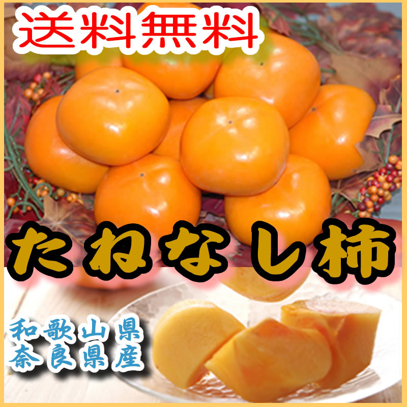柿 種なし柿 約7.5kg 28〜32個入 2L〜3L 贈答用 秀品 たねなし柿 種無し柿 平核無柿 刀根柿柿