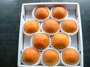 【2021年9月出荷】 糖度22度 返金保証 柿 和歌山 新秋柿 訳あり 2L 10玉 約2.2kg 9t